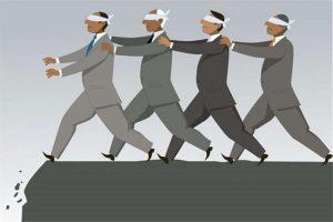 image 2 - herd